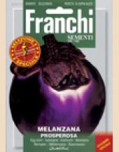 Eggplant(Melanzana) Prosperosa